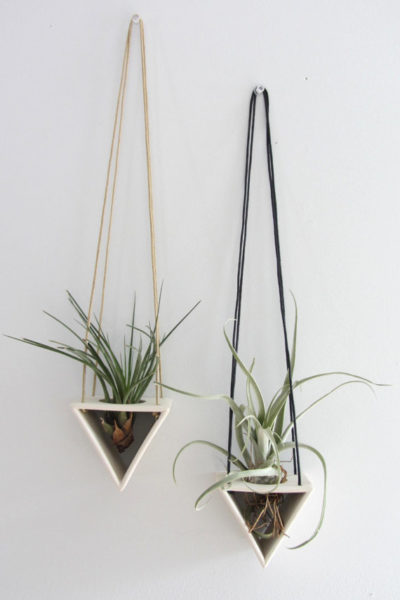 Photo of Half Moon Air Plant Hanger – Made to Order