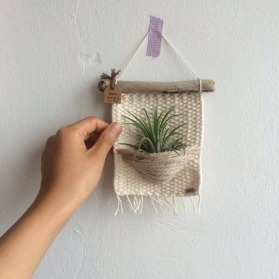 Photo of air plants woven wall hanging, woven wall hanging, home decor