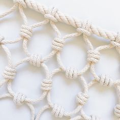Photo of You Have to See This Artist's Massive Knot Collection | Martha Stewart