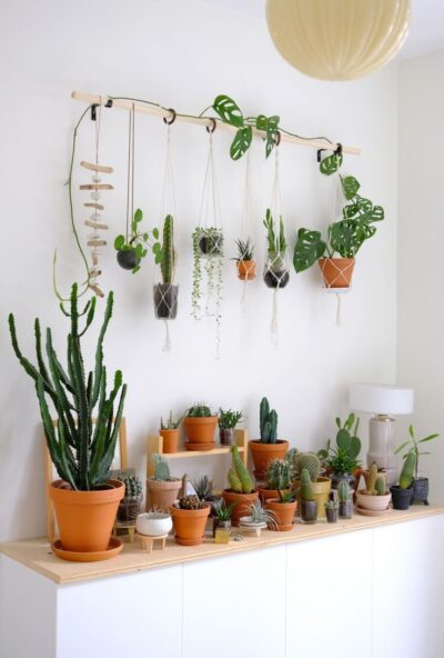 """Photo of #DIY #Hanging #Macrame #Plant #planters #wall """"When I decorate with plants"""